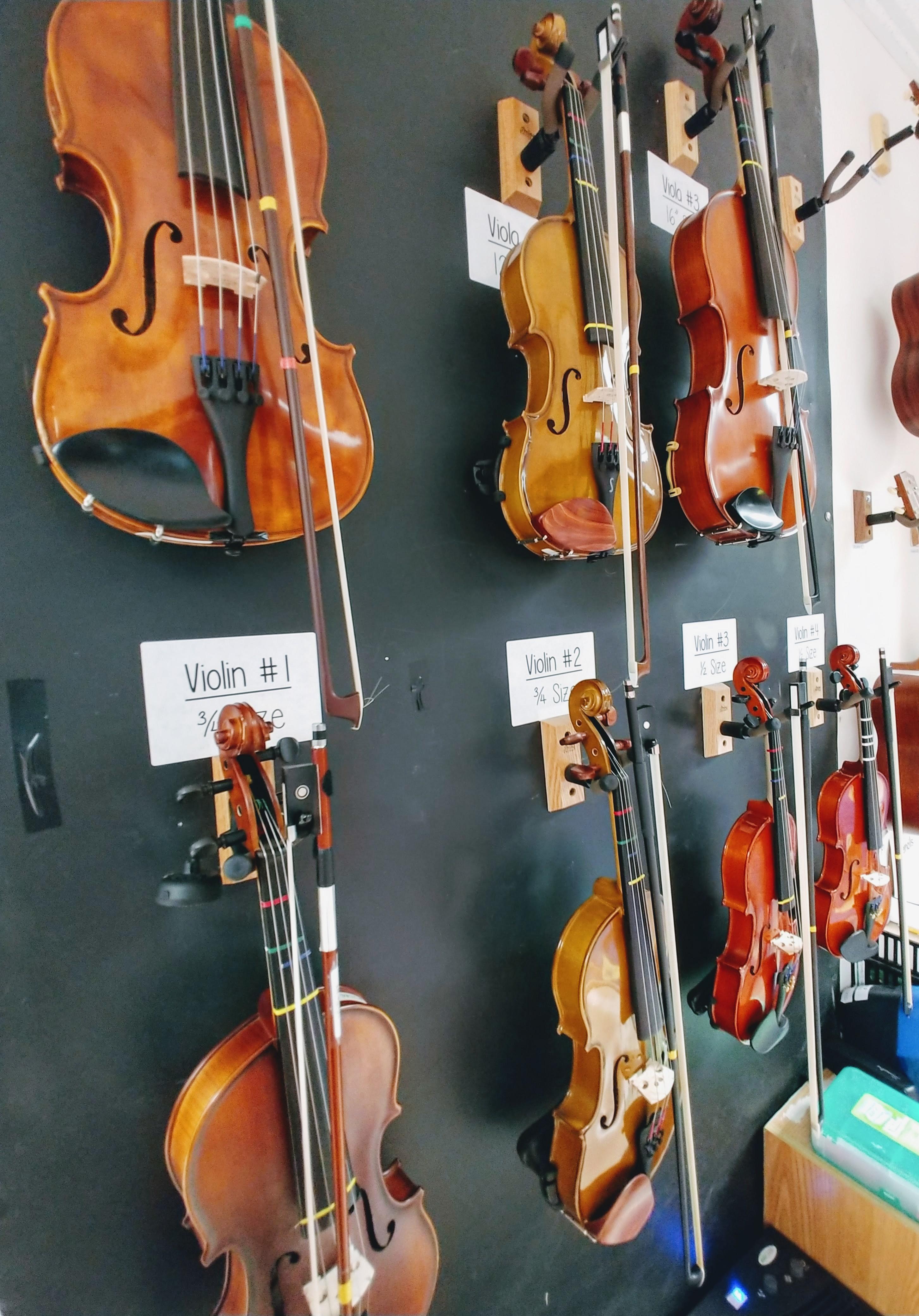 Student Violins and Violas