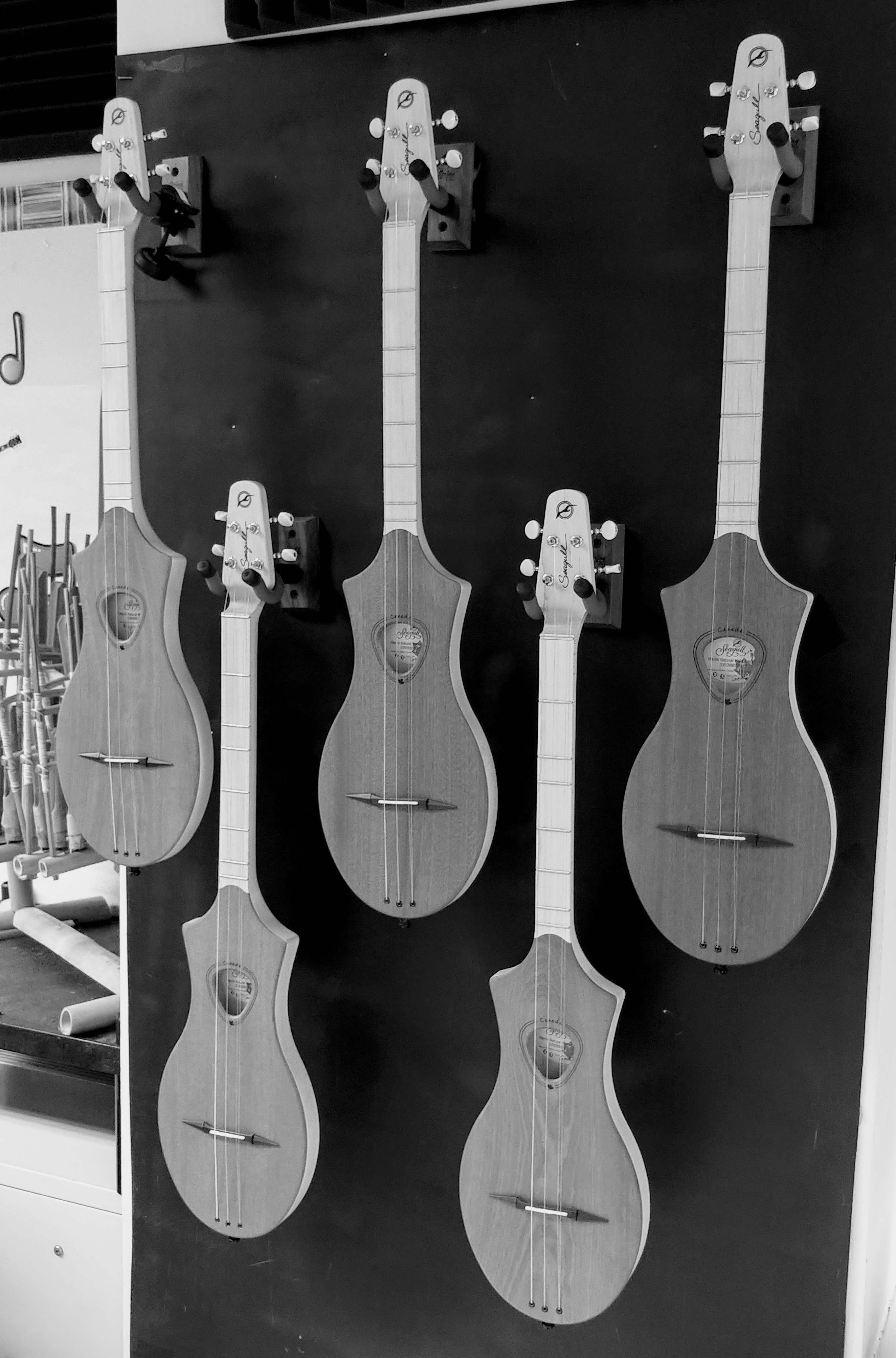 Seagull Merlins (Diatonic string instruments that are similar to dulcimers)