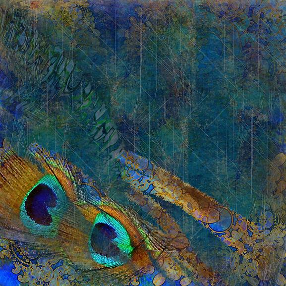 design exotic dark blue, peacock feather