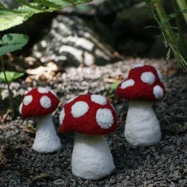 3 Mushrooms Needle Felting Kit