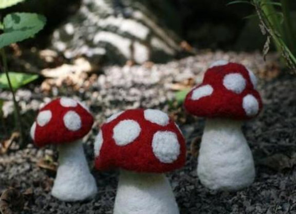 3 Mushrooms Needle Felting Kit