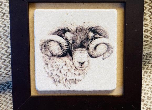 Framed Ram Tile