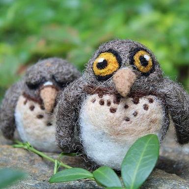 Screech Owl Babies Needle Felting Kit