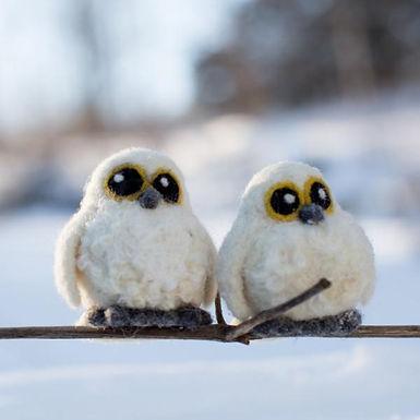 Needle Felting Kit, 2 Snowy Owl Babies