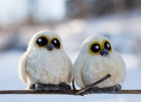 Needle Felting Kit, 2 Snowy Owl Babies