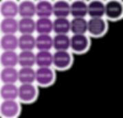 Estrutura (hierarquia, obrigatoriedade, duplicidade, tamanho e alinhamento de registros); Regras de preenchimento de campos (formatos, tamanhos, valores válidos, obrigatoriedade, cálculos); Valores informados na EFD FISCAL/ECD/ECF/Sintegra/eSocial/NF-e x tabelas externas e internas do SPED; Dados cadastrais (CNPJ, CPF, I.E., SUFRAMA, etc); Valores declarados na EFD FISCAL/ECD/ECF/Sintegra/eSocial/NF-e x valores apurados pela auditoria; Alterações indevidas nos produtos/serviços e no cadastro de participantes; Docs ficais (ordem sequencial, cancelamentos, períodos de apuração, modelos, séries, duplicidades, totais de itens, bases de cálculo, alíquotas, valores de ICMS, ICMS ST, IPI, PIS, COFINS, etc); Chaves das NFEs x infos declaradas no Sintegra e na EFD FISCAL; Existência e validade dos códigos NCM´s informados; Críticas de alíquotas de tributos a partir dos códigos NCM dos produtos; Coerência entre CSTs e CFOPs; Cruzamento entre regs próprio arq e de competências diferentes
