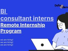 BI consultant interns Remote Internship Program
