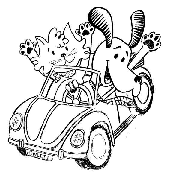 Beetle+dog+and+cat.jpg
