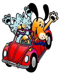 beetle+cat+dog+color.jpg