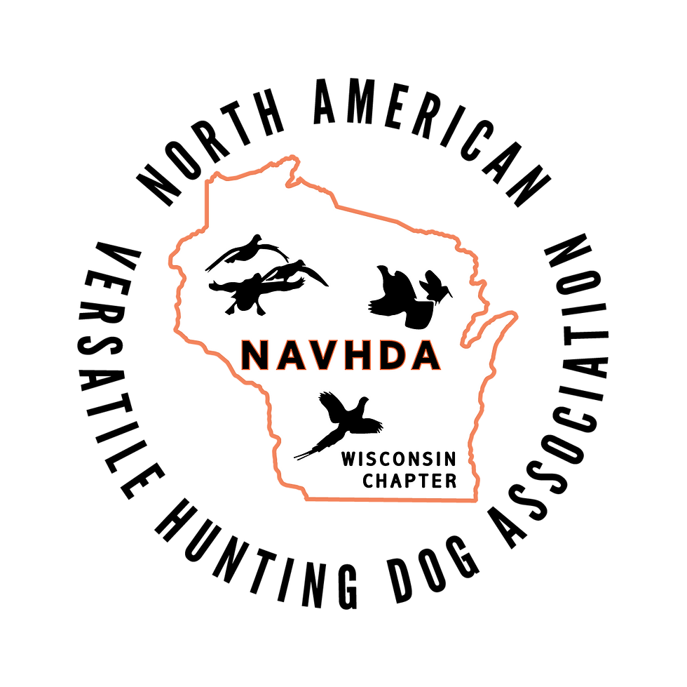 Navhda WI Chapter realistic edge.png