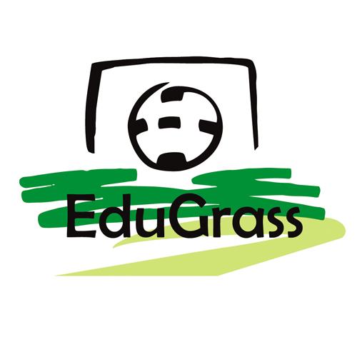 Education Artificial Grass