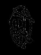 Logo RnT Vector.png