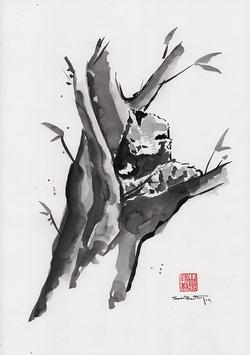 Red Panda Sumi-e
