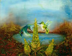 Hummingbirds and Lemon Mazar Marijuana