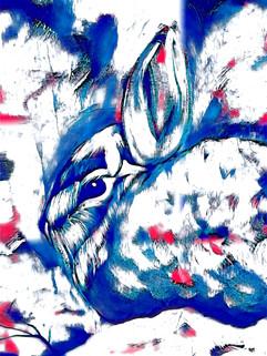 Blue Snow Bunny