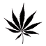 OPinion-Marijuana Leaf0 - Copy.png
