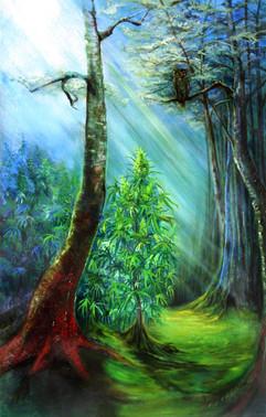 Owl and Marijuana Blue Moonshine