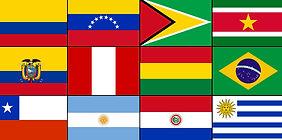 South American flag