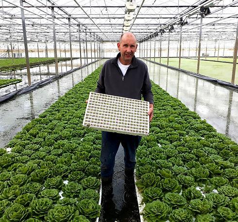 Aqua Grow Almere Growfoam.jpg