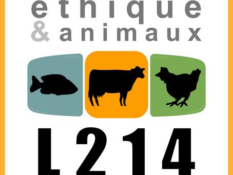 07.11.2019 - Réunion d'accueil des nouveaux bénévoles L214 Nice