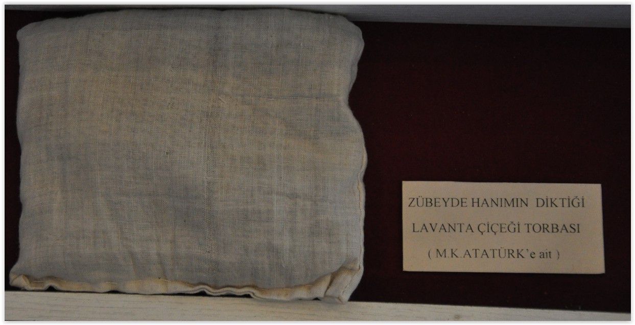 Atatürk Evi 2 (113)