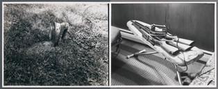 Iron Grass/Iron Guns, 1971
