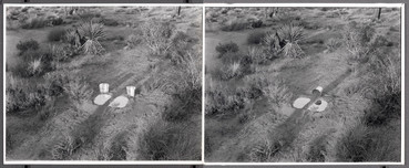 Two Explanations for a Small Split Pond, 1974