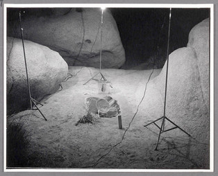 Night Water Hole, 1974