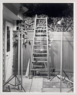 Ornamented Ladder with Aluminum Swallow, 1973