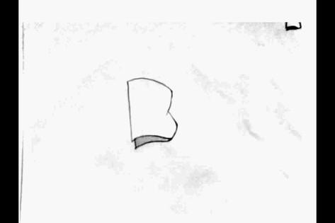 Dineen_Flag.avi