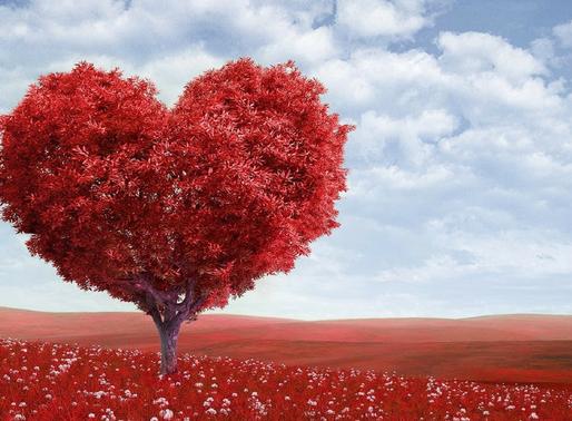 Conscious Love - Part 2
