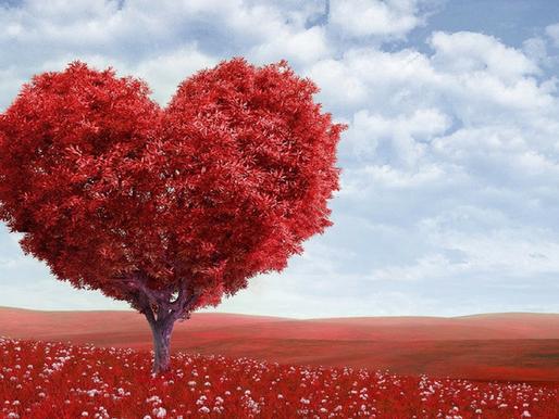 Conscious Love - Part 3