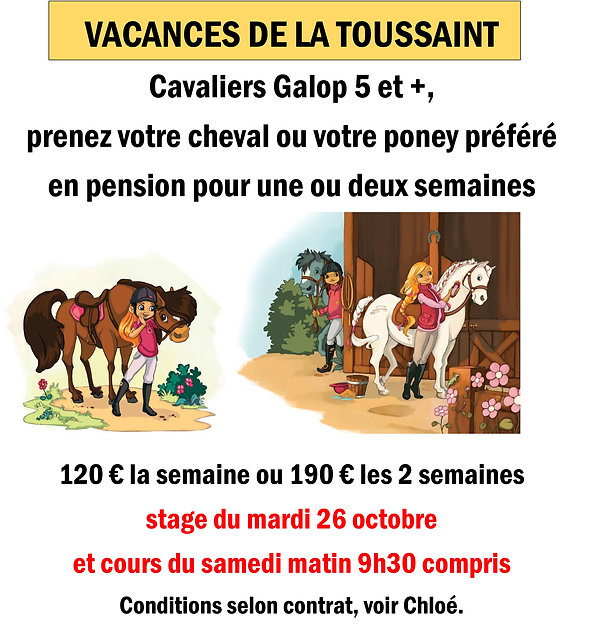 Pension cheval vacances toussaint 2021.jpg