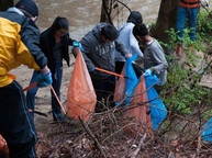 Creek cleanups