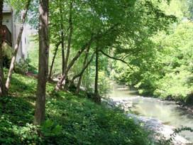 North Fork Peachtree Creek Watershed assessments begin