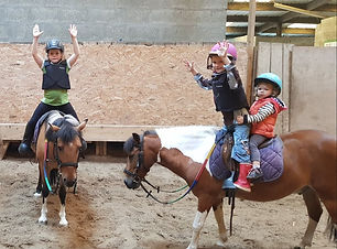 cours poneys
