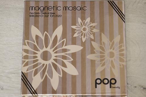 Magnetic Mosaic