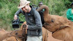 Elephant Sanctuary, Kenya