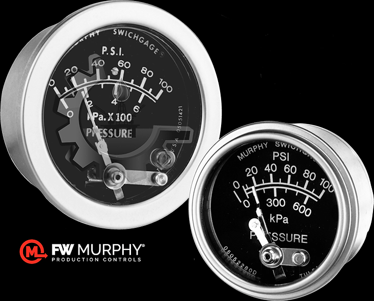 FW MURPHY® Manómetro Análogo 0-300 Psi Material: 316L stainless steel