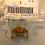 Thumbnail: Supresor de crestas P/Alternador 44.2 - 4 POLOS