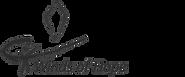 logo%20wings%20of%20hope_edited.png