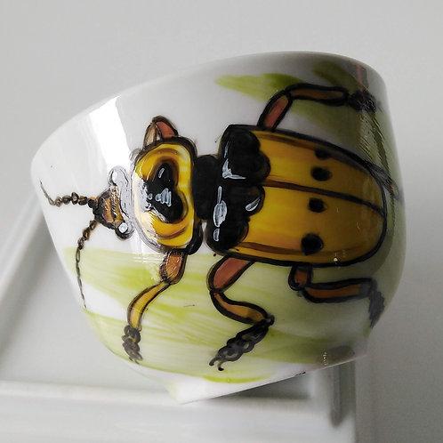 Escarabajo 12