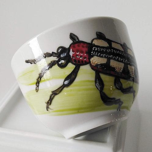 Escarabajo 5