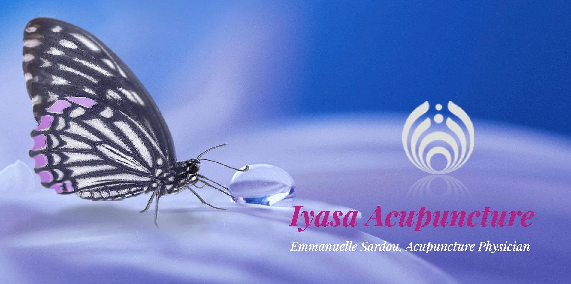 Iyasa Free Info Session