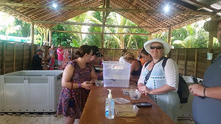 Cruise ship passengers taking a tour in the turtle nursery