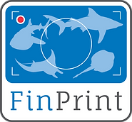 Globa Fin Print Logo