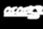 CICI white logo.png