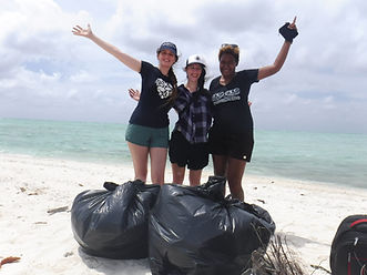 plastic collected during beach cleanup