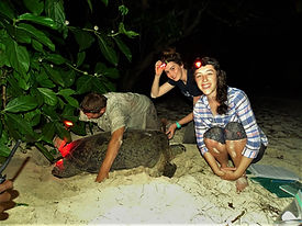 Trip volunteers with their first tagged turtle