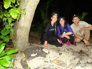 Mel, Olivia & Felix with one of the nesting green turtle